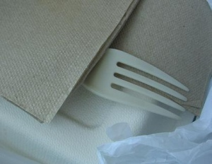 Recycled napkin and biodegradable fork from Native Foods in Westwood, Los Angeles Photo By greenlagirl