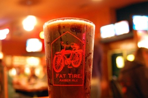 1554 in a Fat Tire Pint Photo By mfajardo