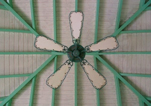 Caribbean ceiling fan Photo by exfordy