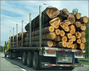 Maine Logging Truck Photo By Tony the Misfit