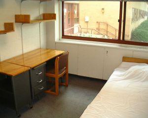 Harvard Dorm Room Photo By jonsson