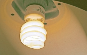 Energy Saving Lightbulb Photo By Muffet