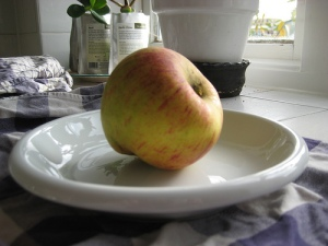 foraged apple Photo By artethgray
