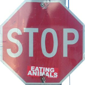 stop eating animals Photo By striatic